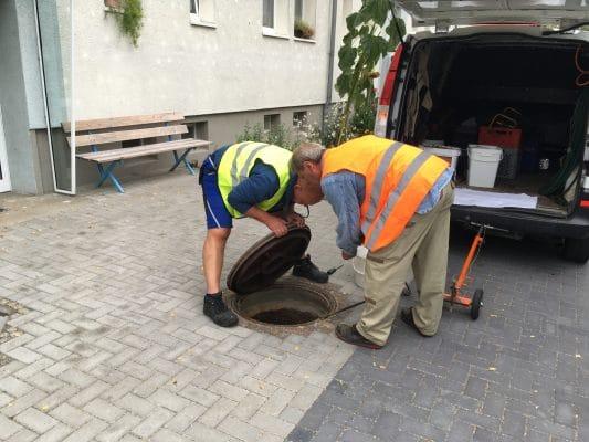 Rattenbekämpfung in Eilenburg